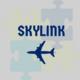 Skylink, Inc.